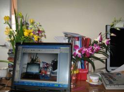 Tablou static de primavara cu laptop si flori